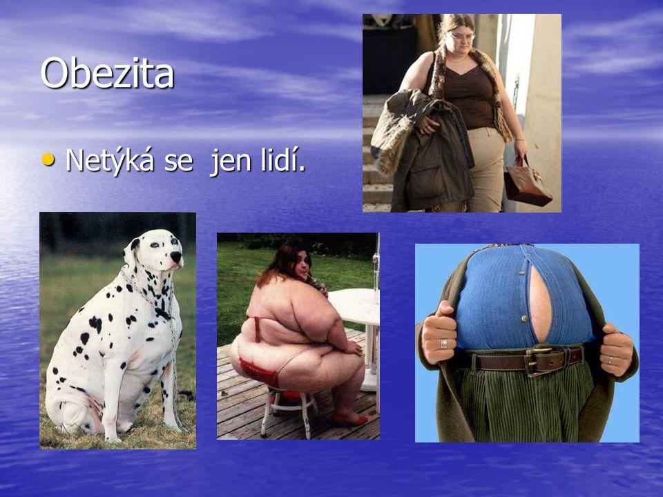 Obezita Netýká se jen lidí.