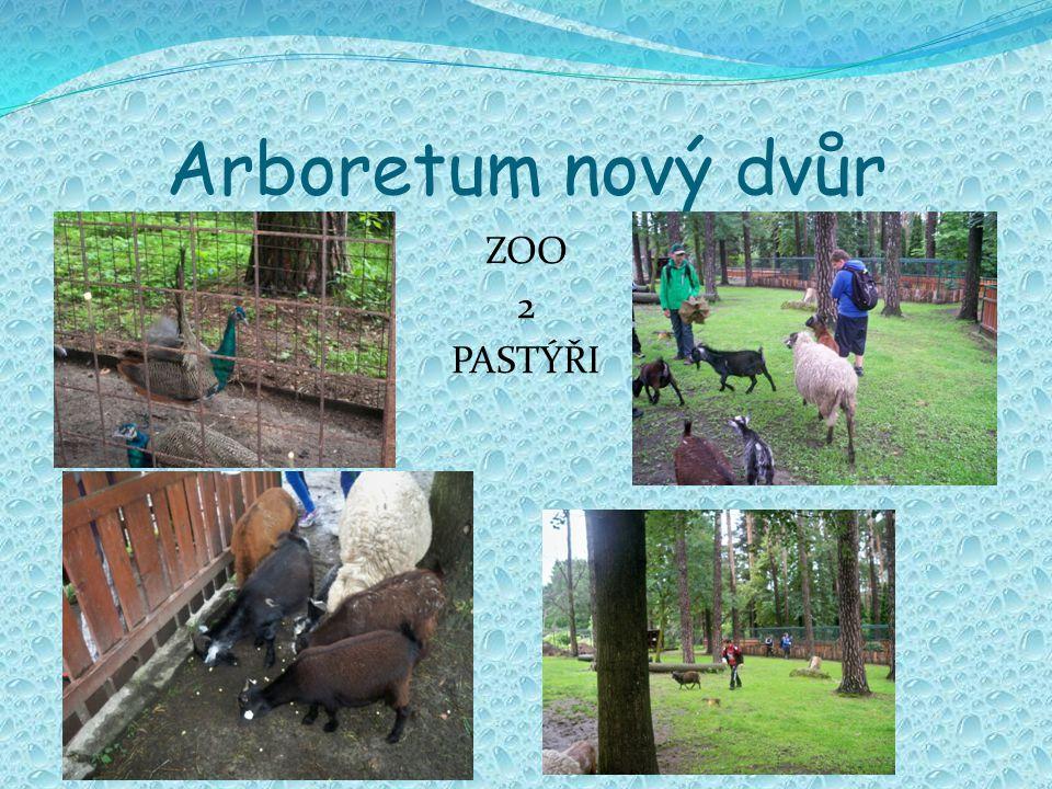 Arboretum nový dvůr ZOO 2 PASTÝŘI