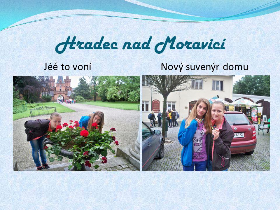 Hradec nad Moravicí Jéé to voní Nový suvenýr domu