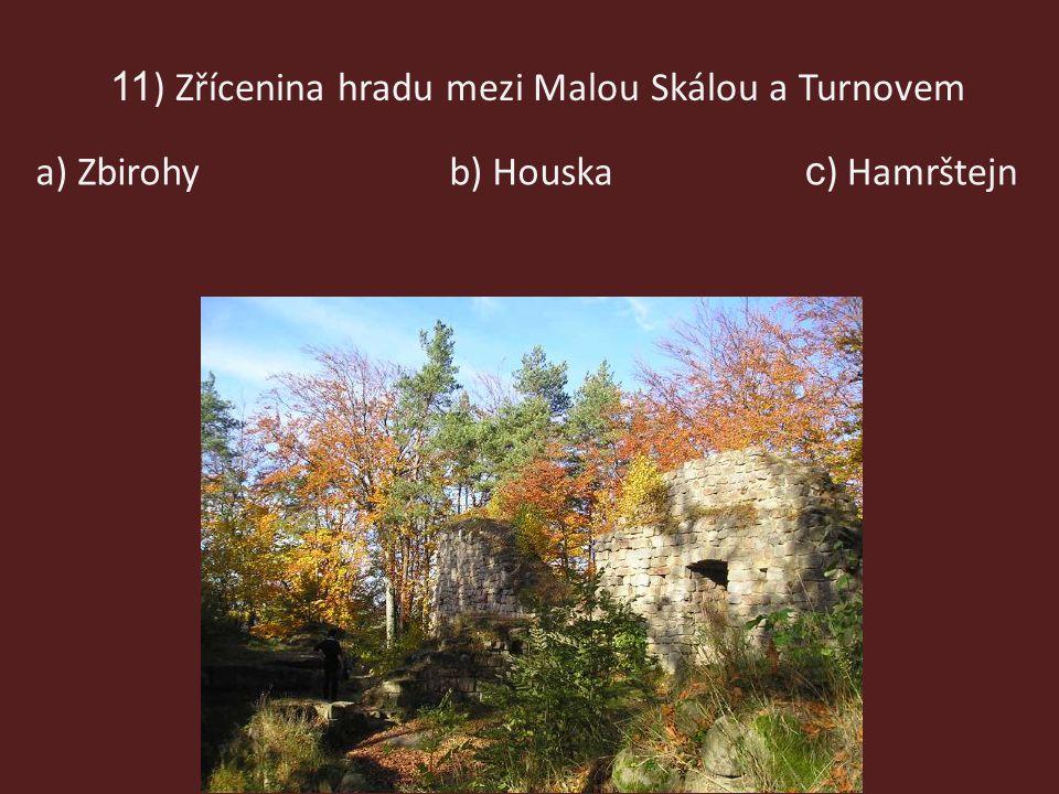 11) Zřícenina hradu mezi Malou Skálou a Turnovem