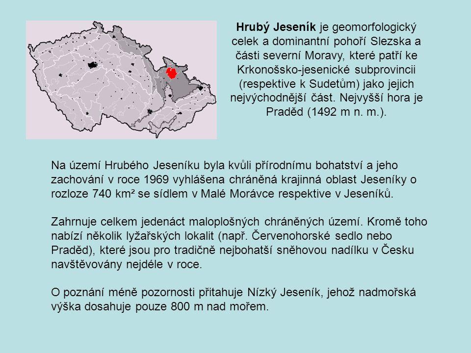 Hrubý Jeseník je geomorfologický celek a dominantní pohoří Slezska a části severní Moravy, které patří ke Krkonošsko-jesenické subprovincii (respektive k Sudetům) jako jejich nejvýchodnější část. Nejvyšší hora je Praděd (1492 m n. m.).