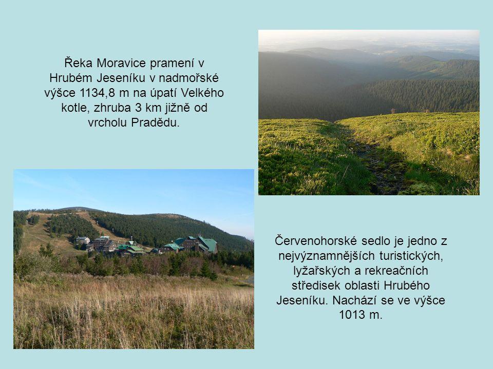 Řeka Moravice pramení v Hrubém Jeseníku v nadmořské výšce 1134,8 m na úpatí Velkého kotle, zhruba 3 km jižně od vrcholu Pradědu.