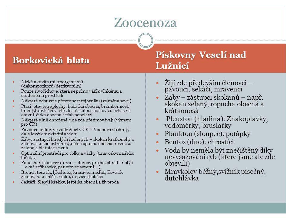 Zoocenoza Pískovny Veselí nad Lužnicí Borkovická blata