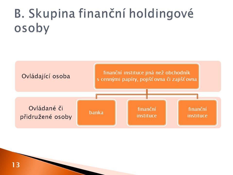 B. Skupina finanční holdingové osoby