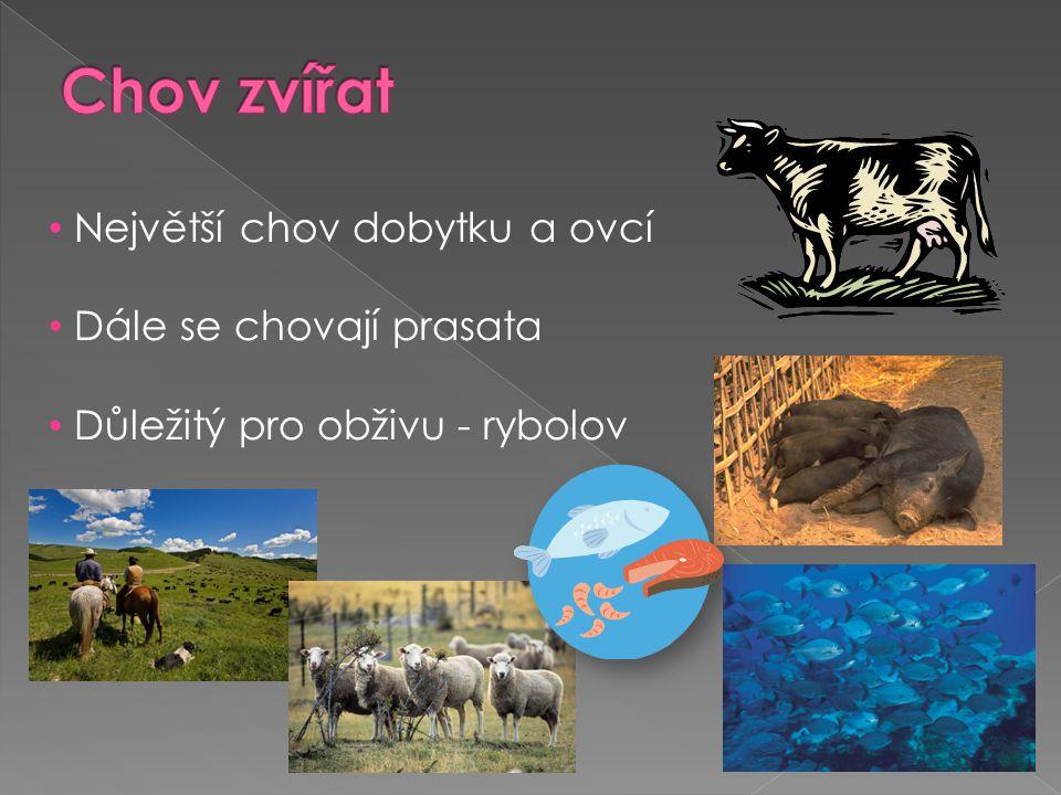Chov zvířat Největší chov dobytku a ovcí Dále se chovají prasata