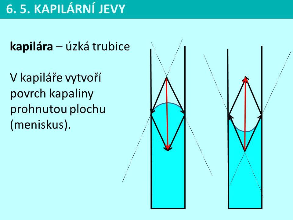 6. 5. KAPILÁRNÍ JEVY kapilára – úzká trubice