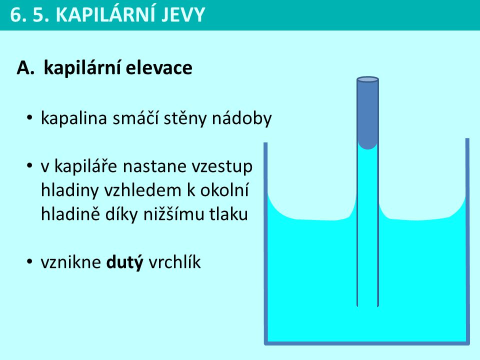 6. 5. KAPILÁRNÍ JEVY kapilární elevace kapalina smáčí stěny nádoby