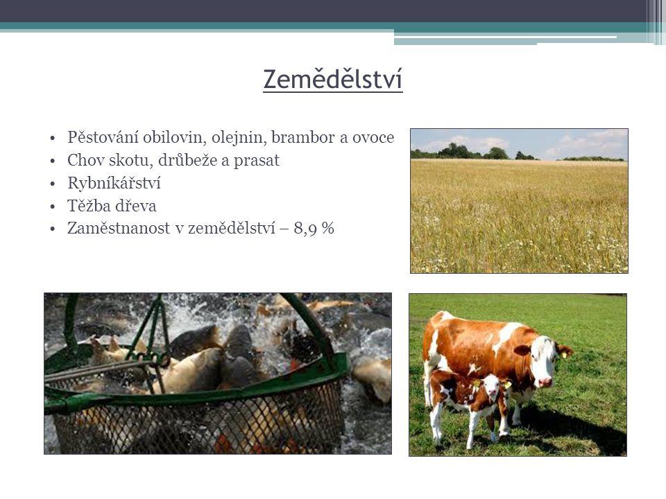 Zemědělství Pěstování obilovin, olejnin, brambor a ovoce