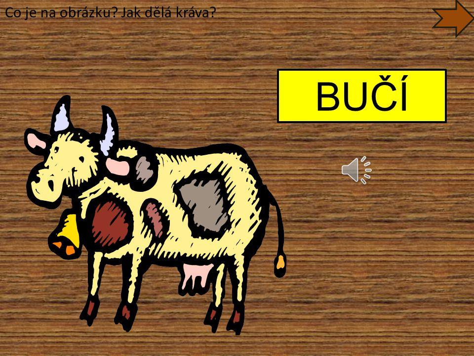 Co je na obrázku Jak dělá kráva