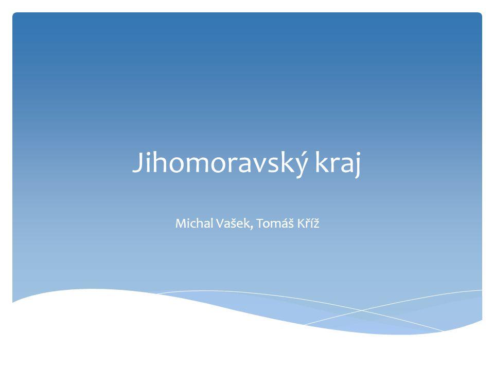 Michal Vašek, Tomáš Kříž