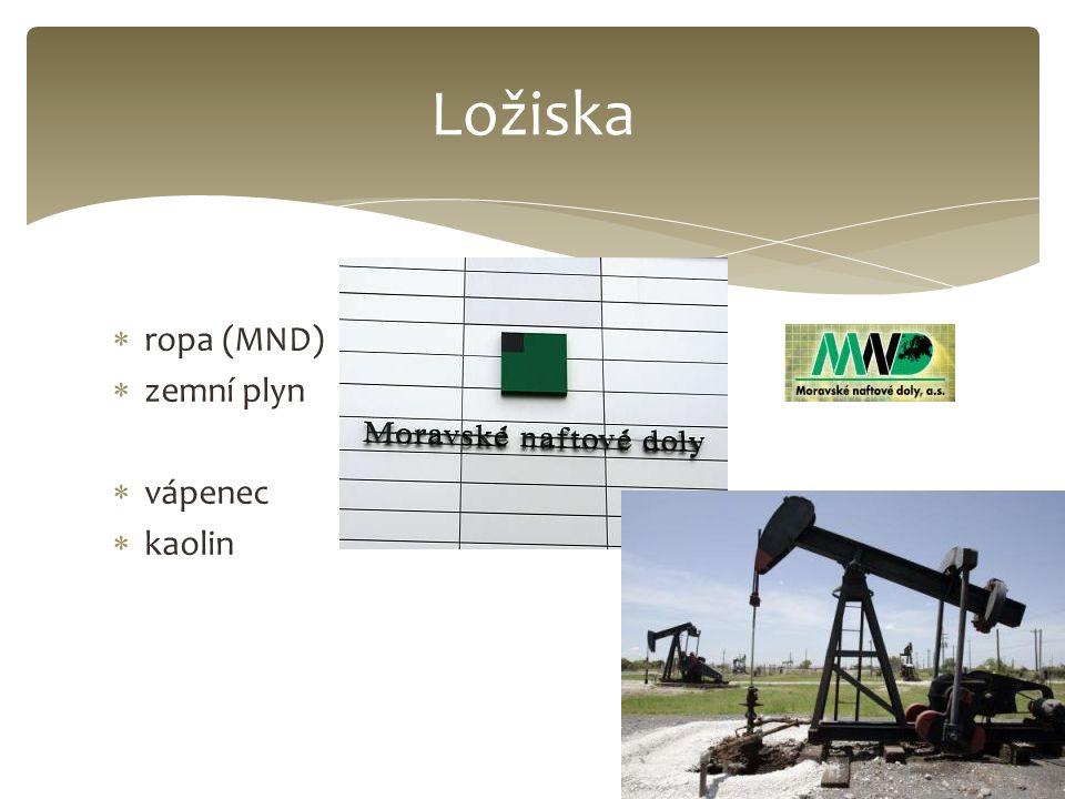 Ložiska ropa (MND) zemní plyn vápenec kaolin