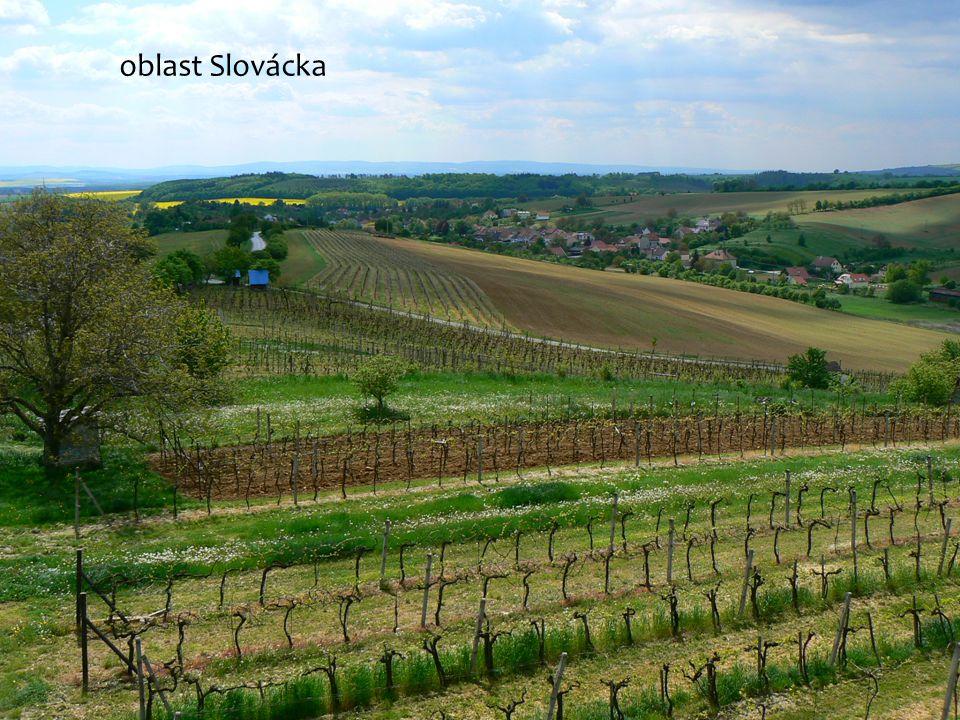 oblast Slovácka