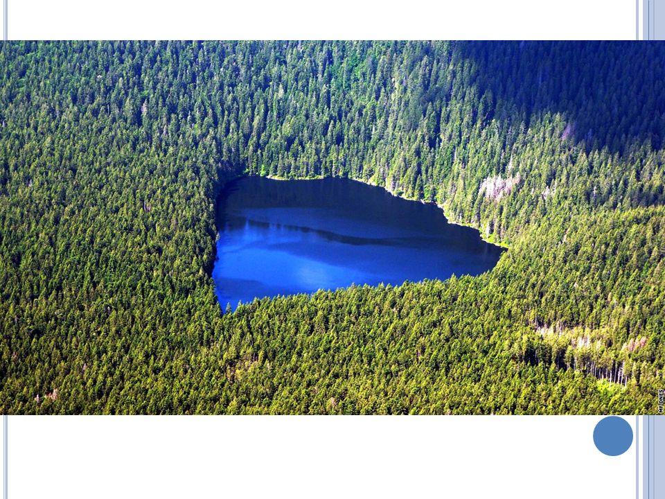 Jezera V ČR – velmi málo jezer Hlavně na Šumavě – ledovcová jezera