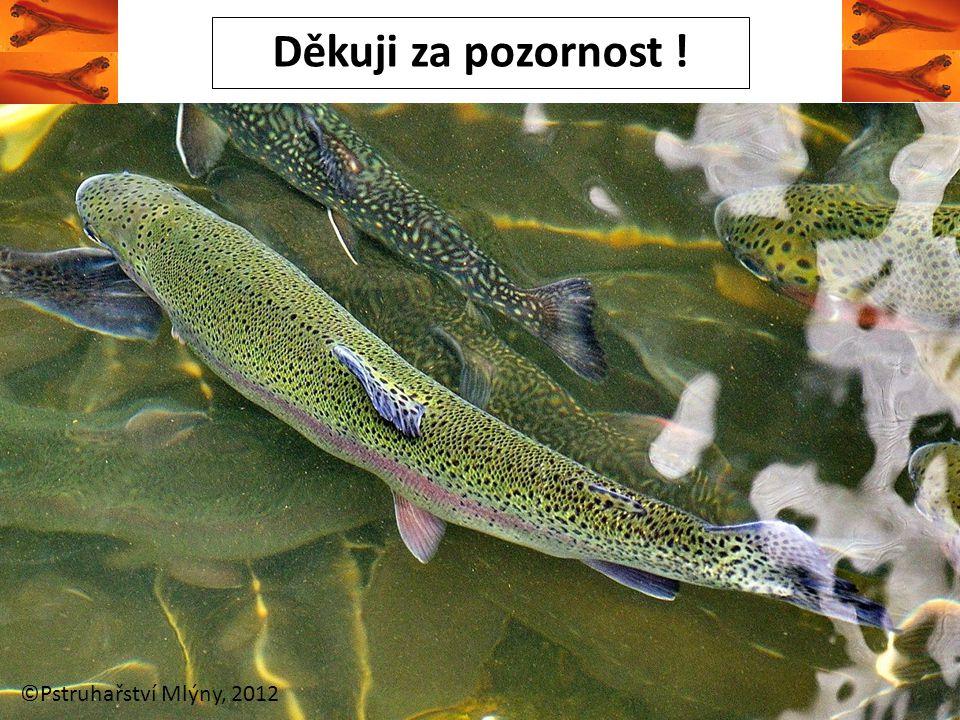 Děkuji za pozornost ! ©Pstruhařství Mlýny, 2012
