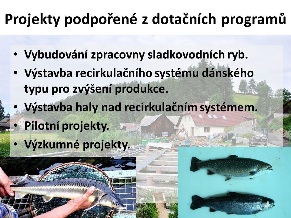 Projekty podpořené z dotačních programů
