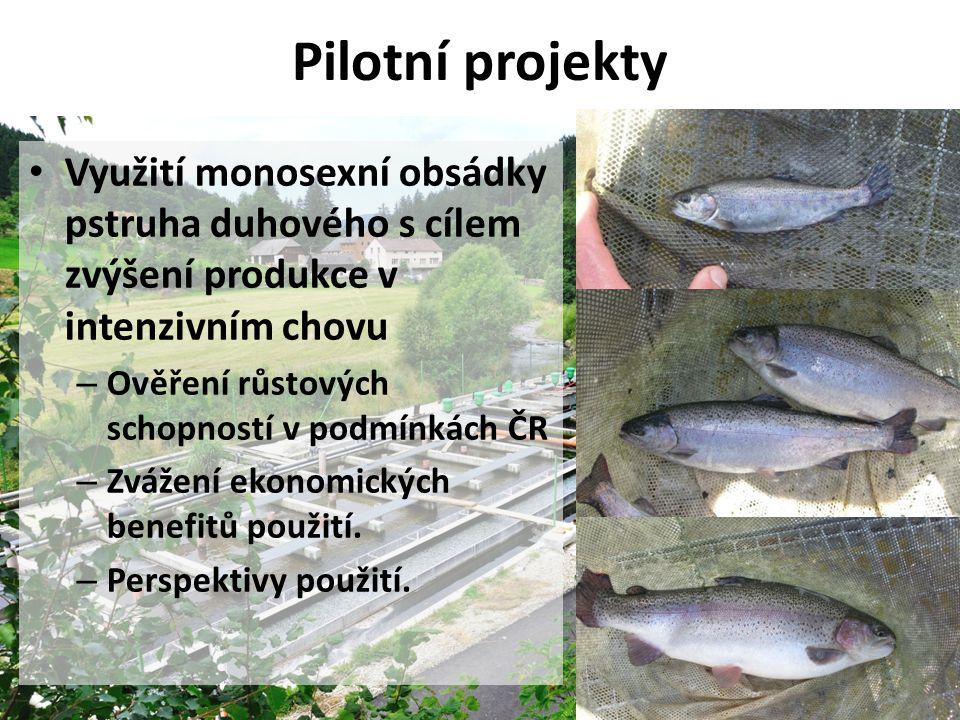 Pilotní projekty Využití monosexní obsádky pstruha duhového s cílem zvýšení produkce v intenzivním chovu.