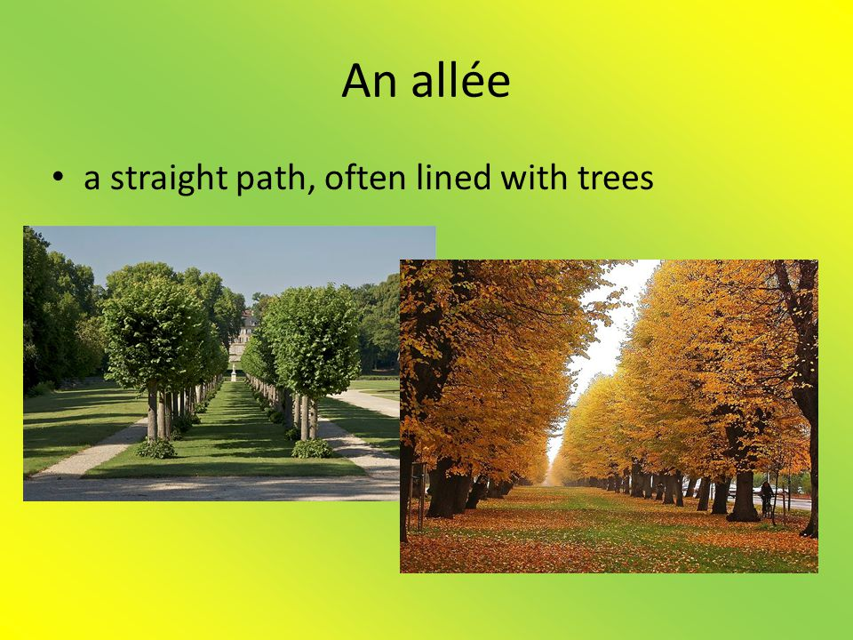 An allée a straight path, often lined with trees