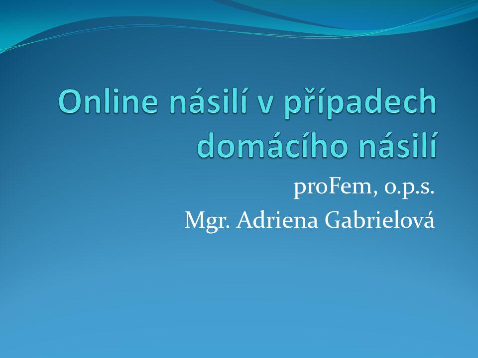 Online násilí v případech domácího násilí
