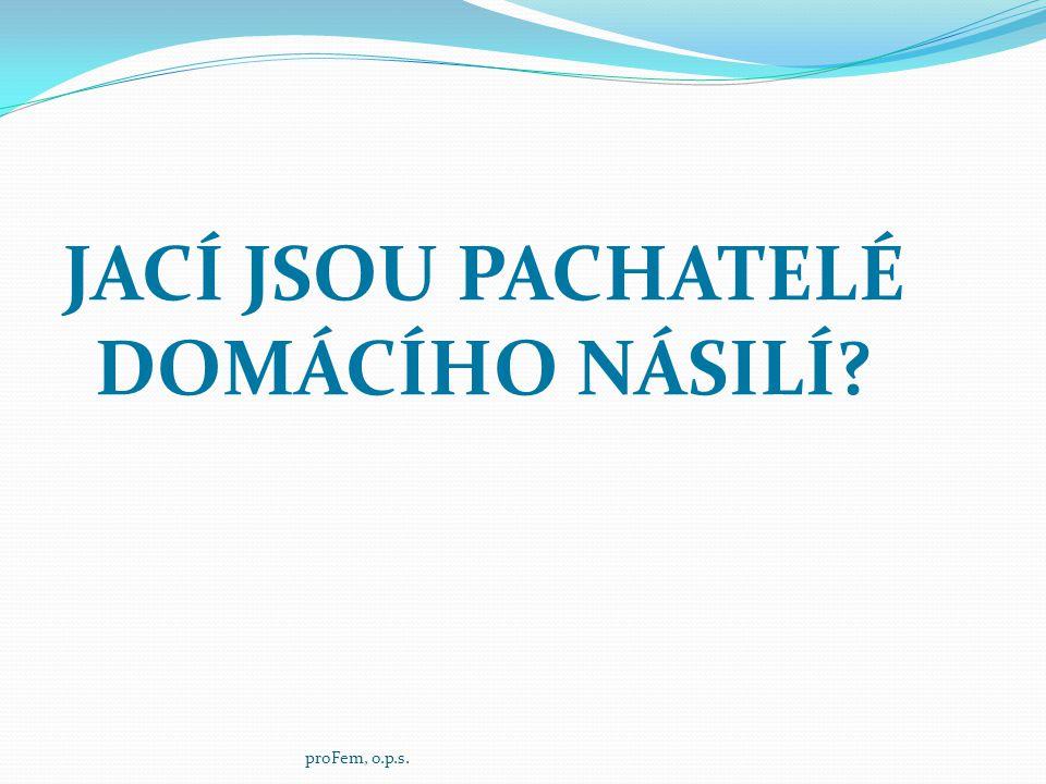 JACÍ JSOU PACHATELÉ DOMÁCÍHO NÁSILÍ