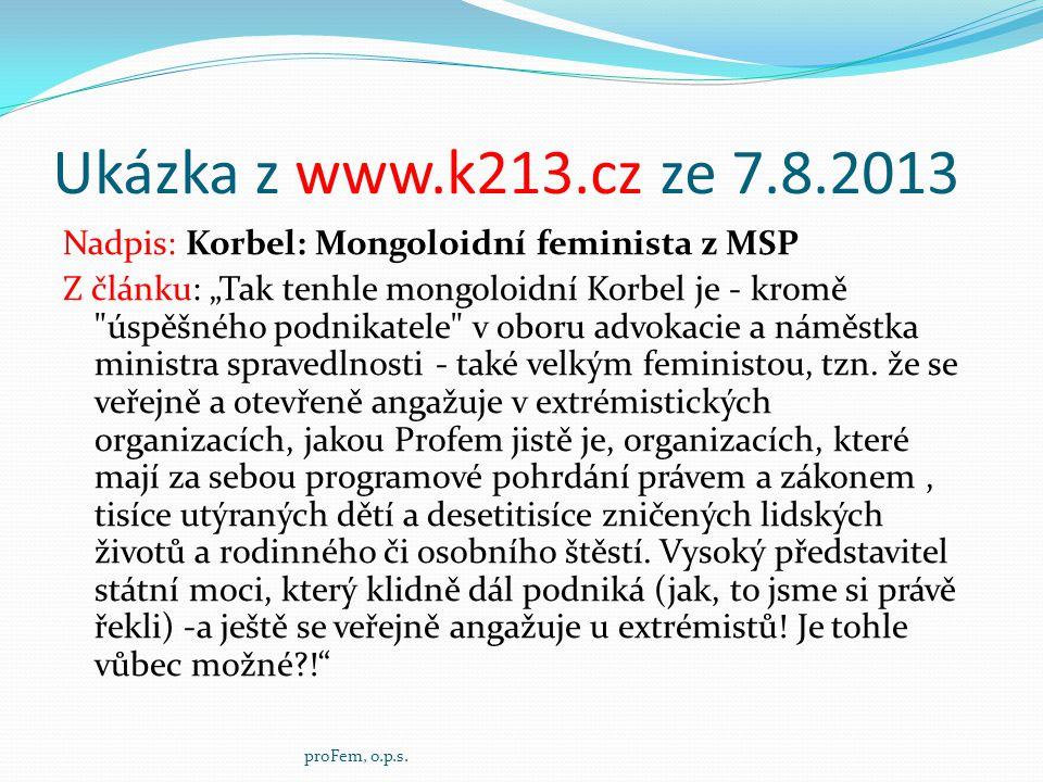Ukázka z www.k213.cz ze 7.8.2013
