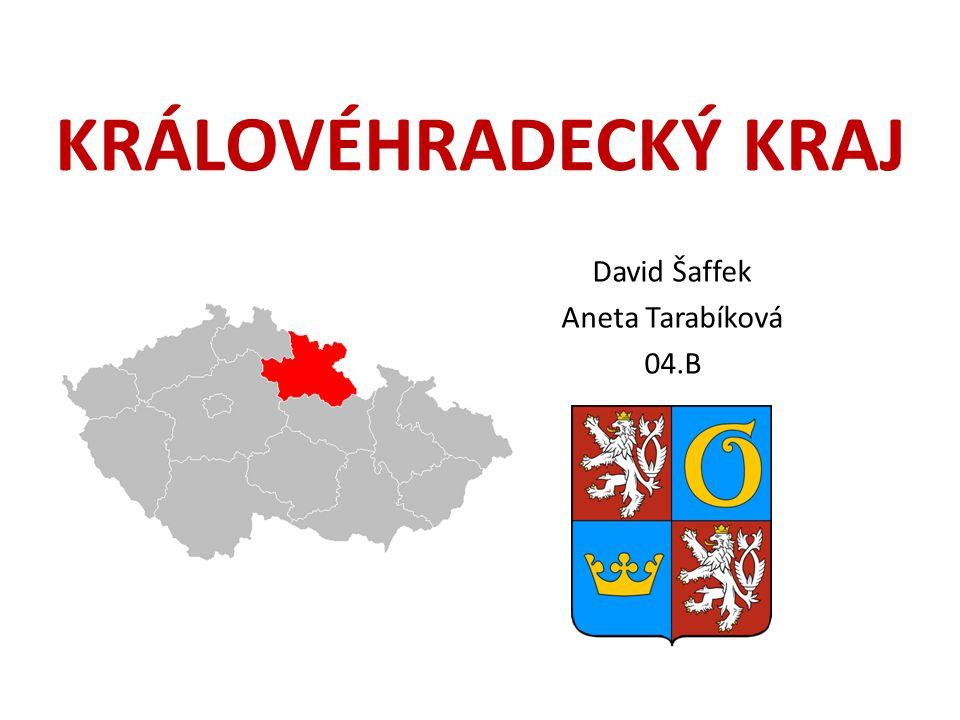 David Šaffek Aneta Tarabíková 04.B
