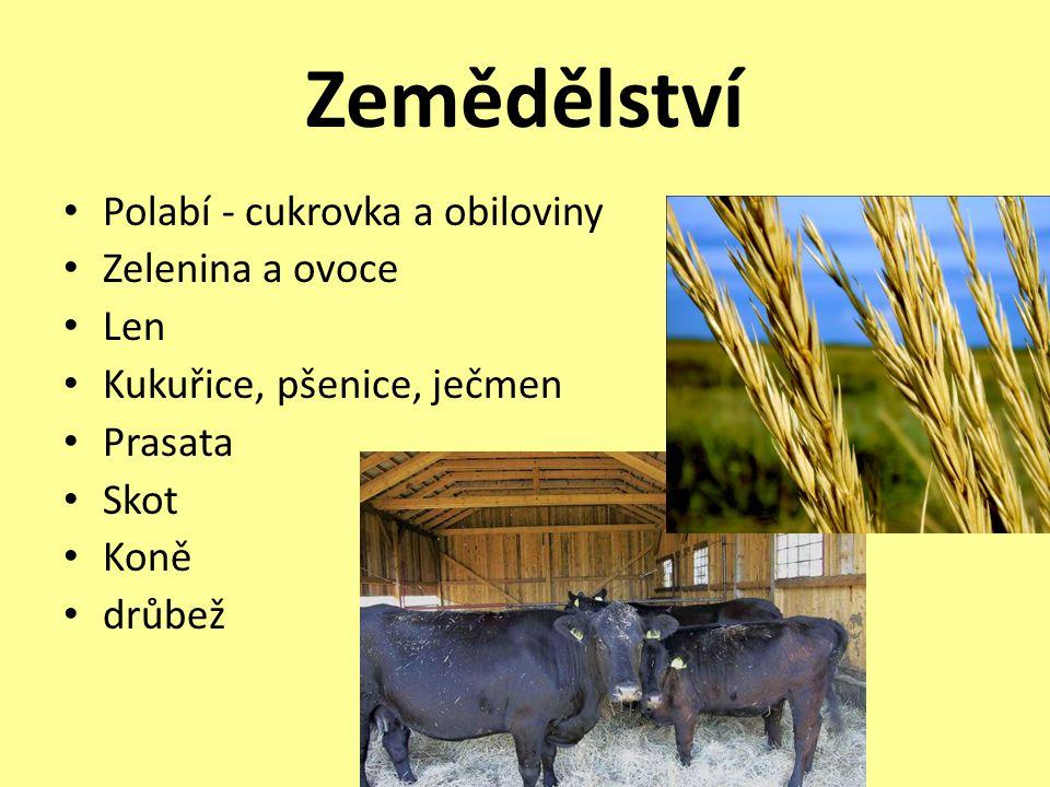 Zemědělství Polabí - cukrovka a obiloviny Zelenina a ovoce Len