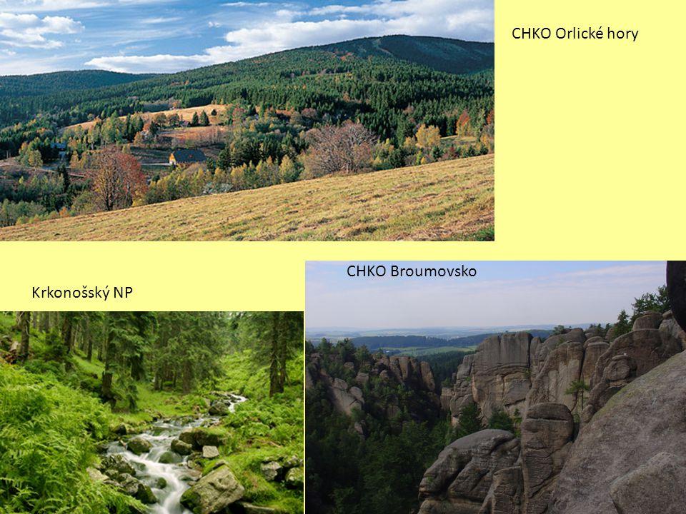 CHKO Orlické hory CHKO Broumovsko Krkonošský NP