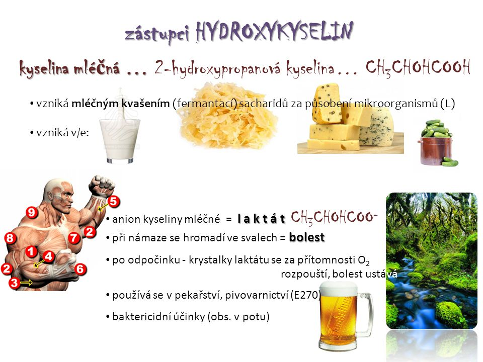 zástupci HYDROXYKYSELIN