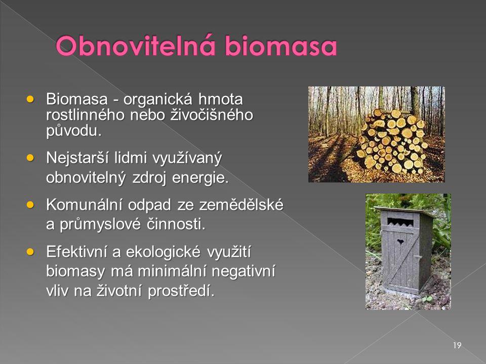 Obnovitelná biomasa Biomasa - organická hmota rostlinného nebo živočišného původu. Nejstarší lidmi využívaný obnovitelný zdroj energie.