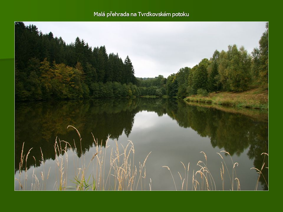 Malá přehrada na Tvrdkovském potoku