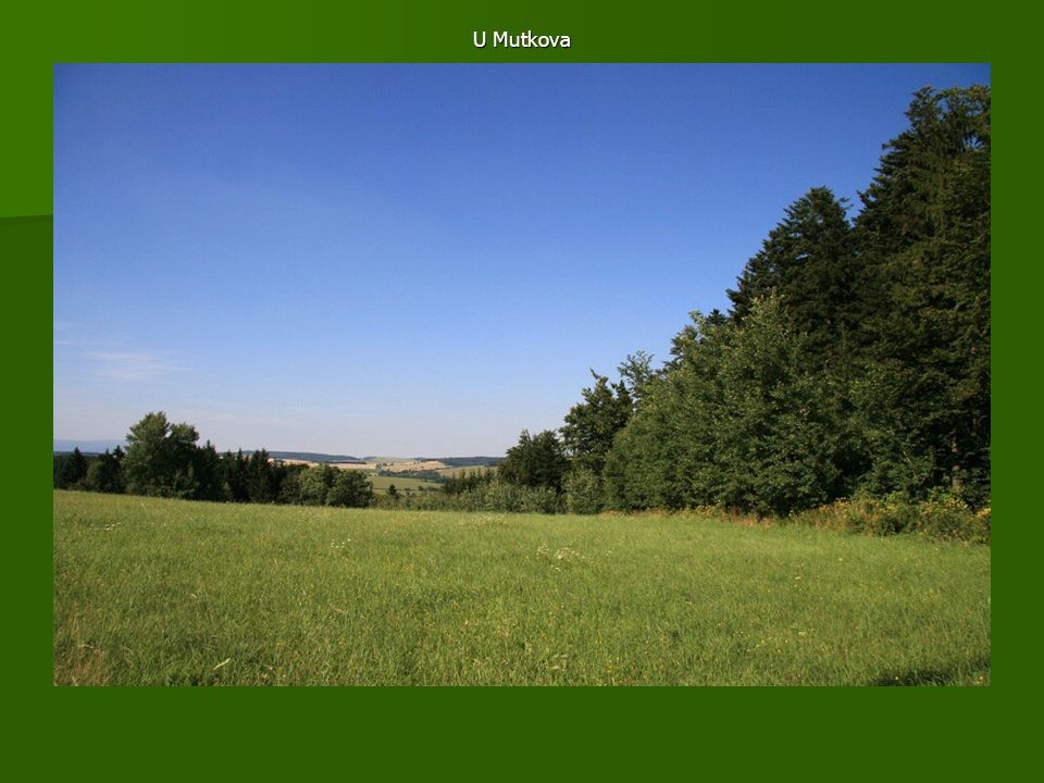 U Mutkova