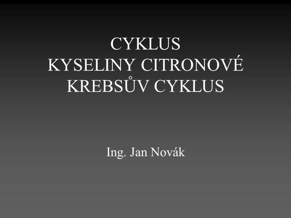CYKLUS KYSELINY CITRONOVÉ KREBSŮV CYKLUS