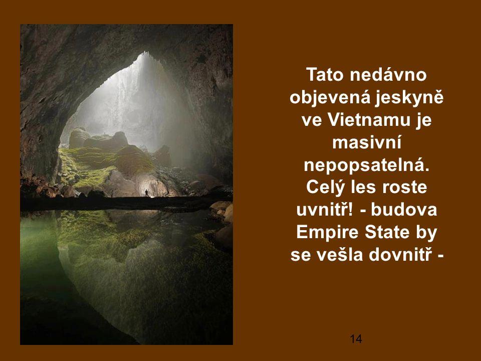 Tato nedávno objevená jeskyně ve Vietnamu je masivní nepopsatelná