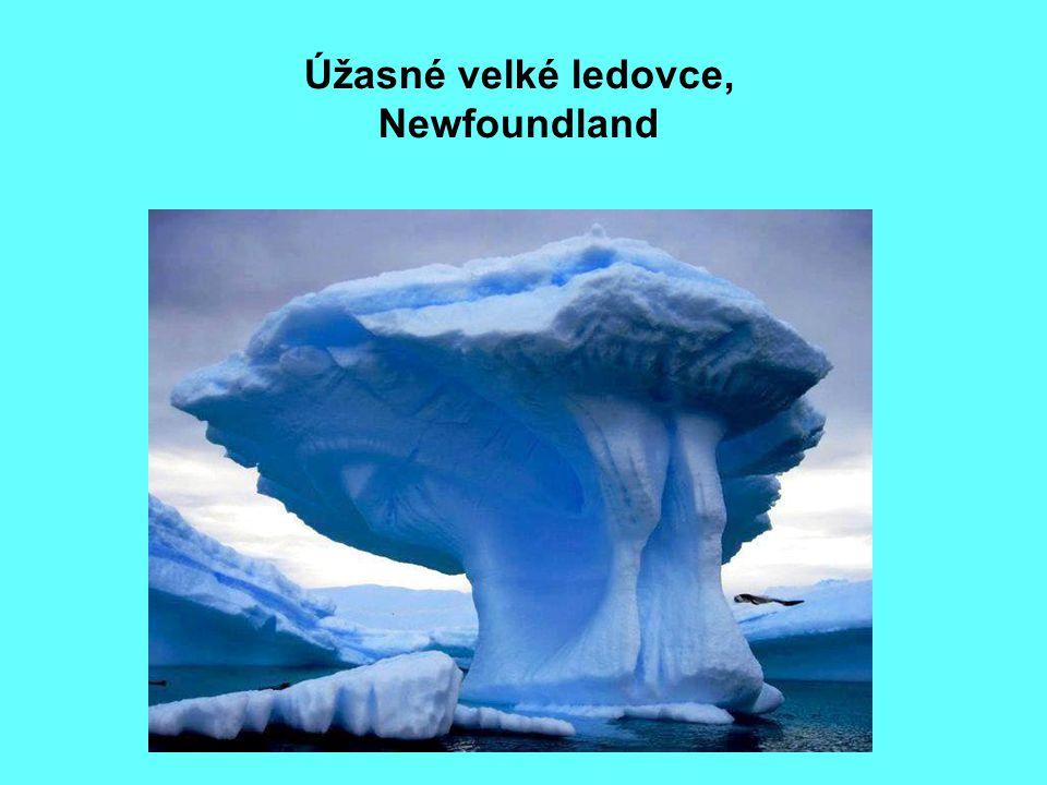 Úžasné velké ledovce, Newfoundland