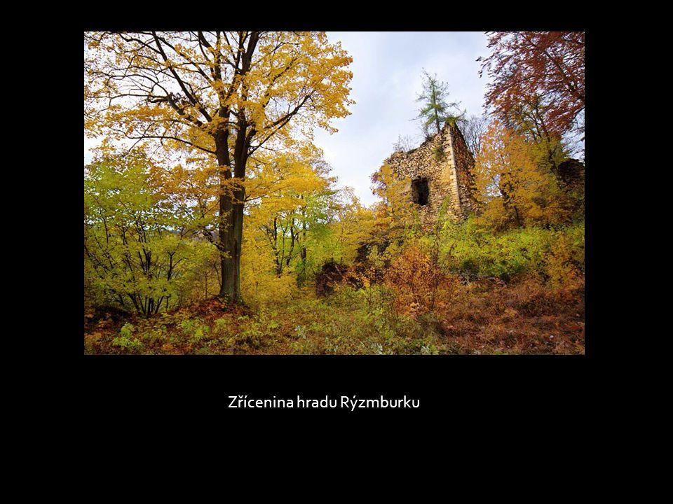Zřícenina hradu Rýzmburku