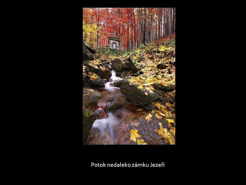 Potok nedaleko zámku Jezeří