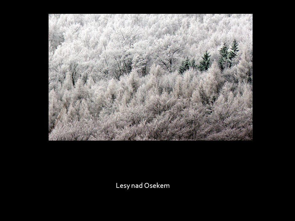 Lesy nad Osekem