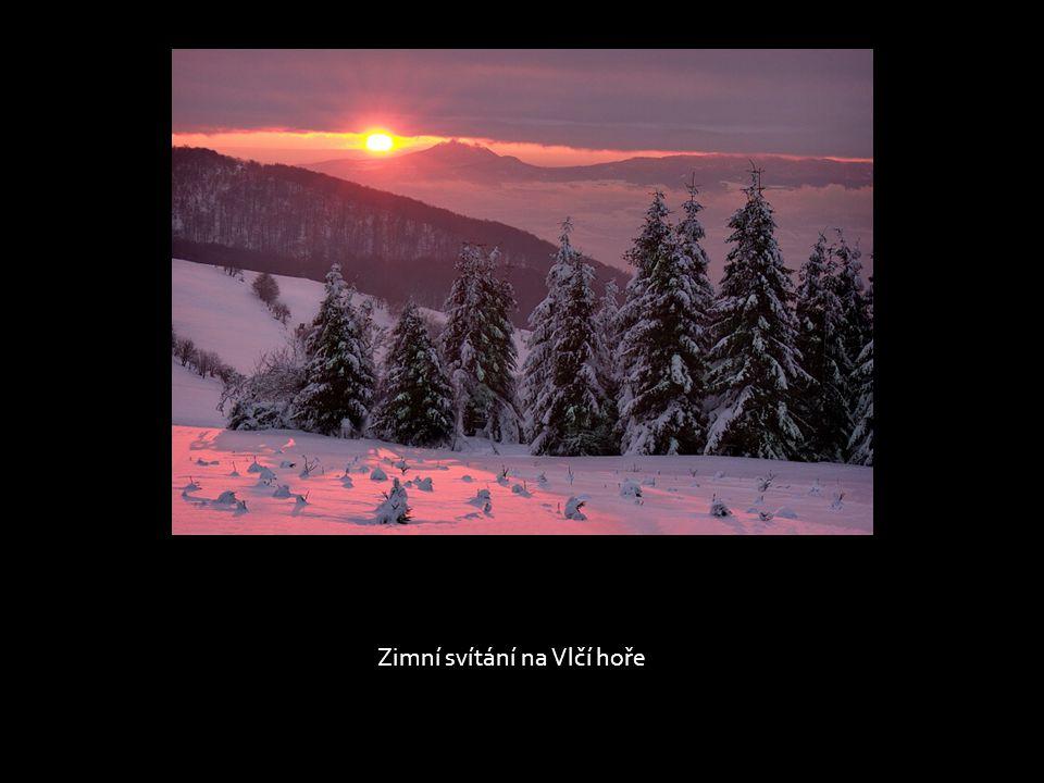 Zimní svítání na Vlčí hoře