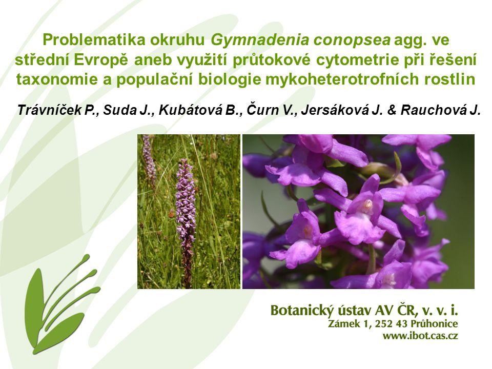 Problematika okruhu Gymnadenia conopsea agg