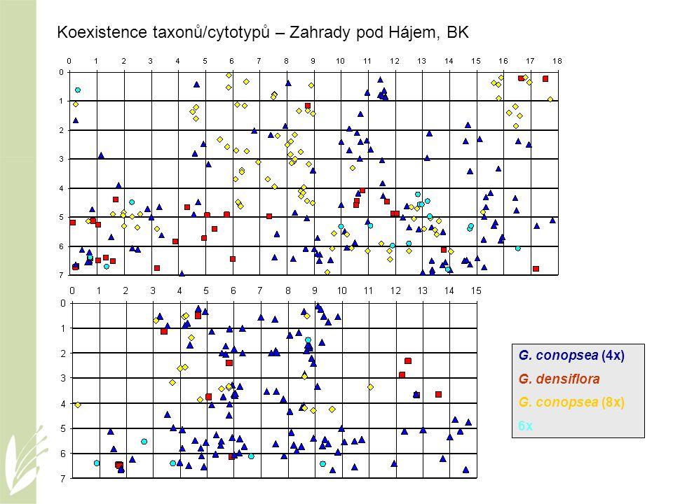 Koexistence taxonů/cytotypů – Zahrady pod Hájem, BK