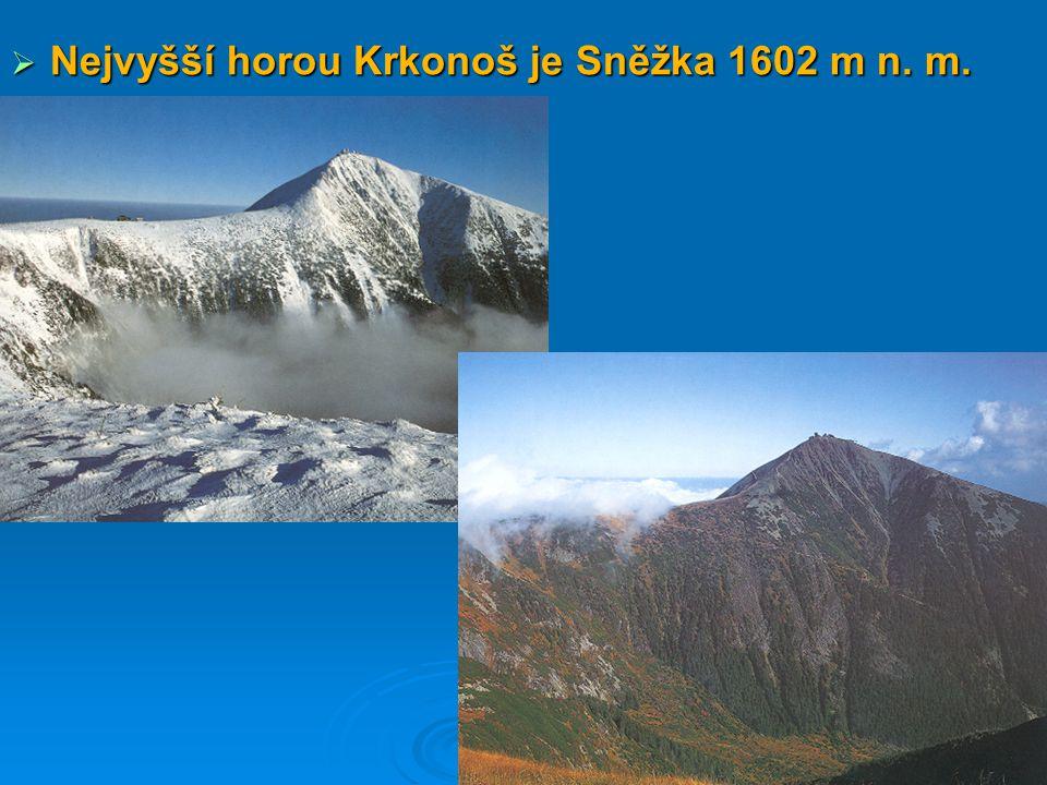 Nejvyšší horou Krkonoš je Sněžka 1602 m n. m.