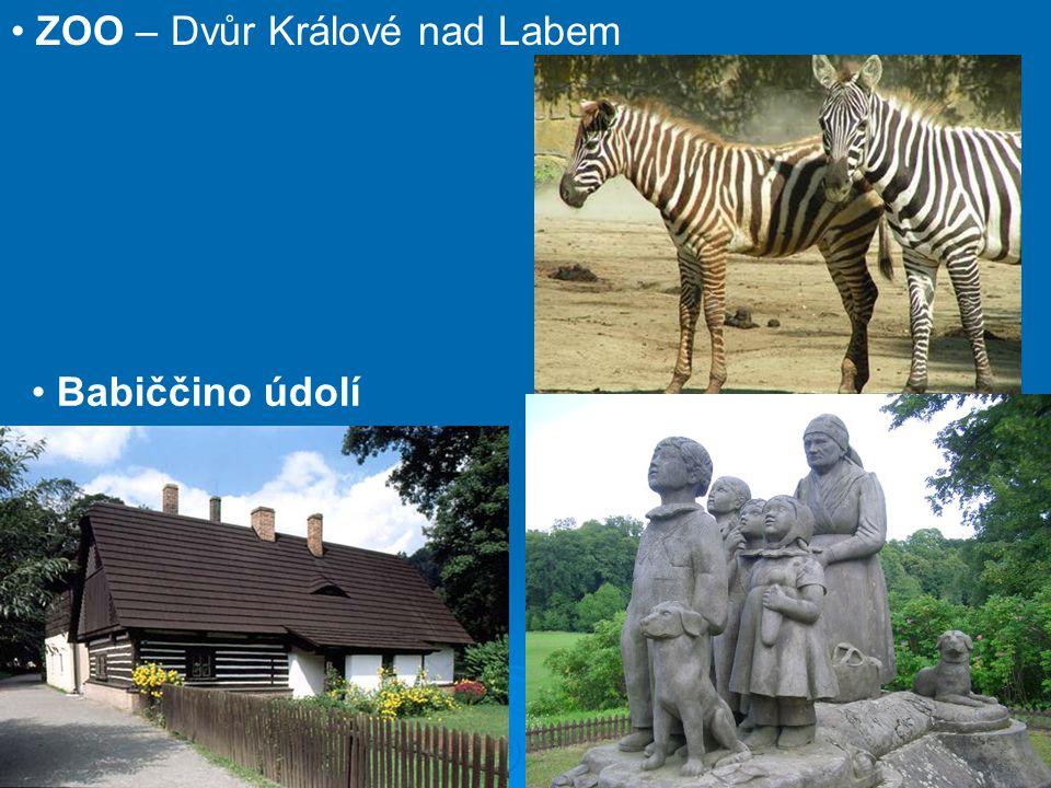 ZOO – Dvůr Králové nad Labem
