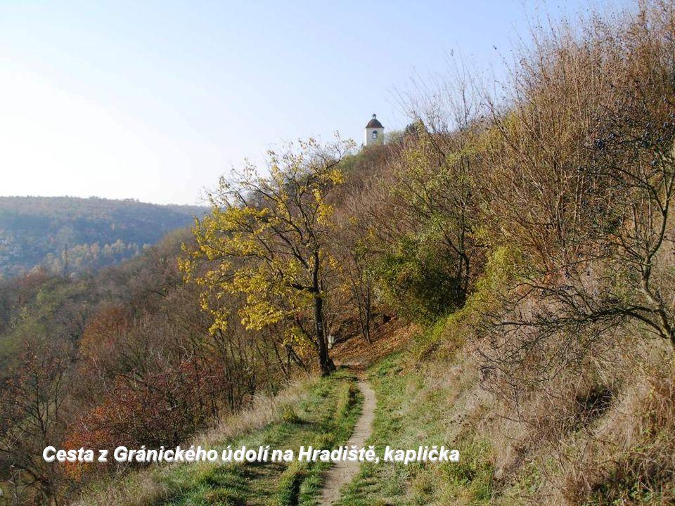 Cesta z Gránického údolí na Hradiště, kaplička