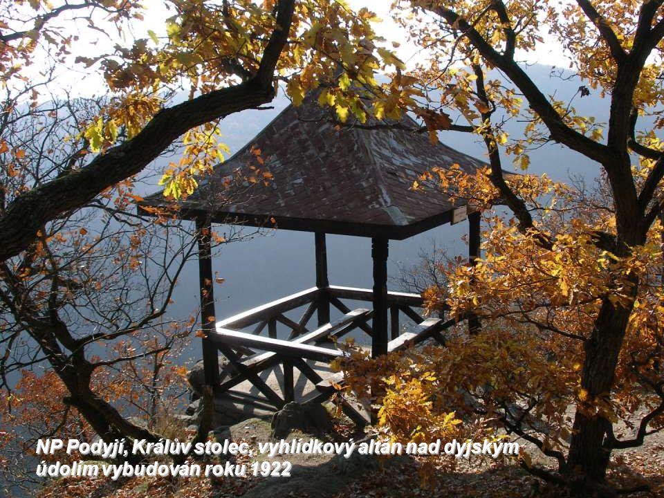 NP Podyjí, Králův stolec, vyhlídkový altán nad dyjským údolím vybudován roku 1922