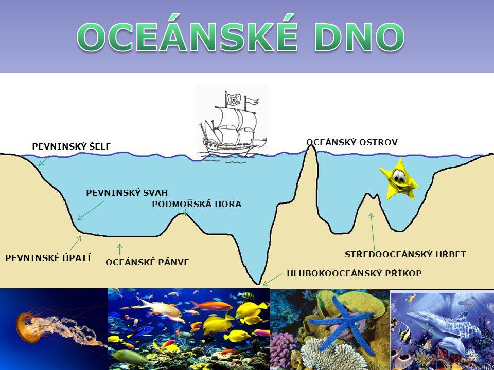 OCEÁNSKÉ DNO OCEÁNSKÝ OSTROV PEVNINSKÝ ŠELF PEVNINSKÝ SVAH
