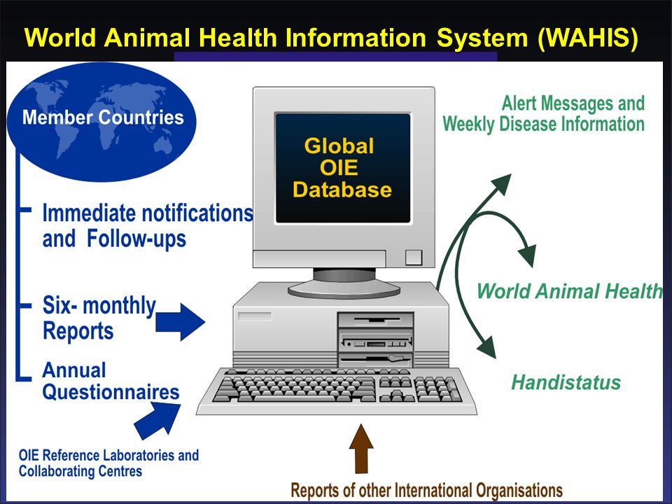 World Animal Health Information System (WAHIS)
