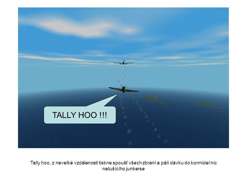 TALLY HOO !!.