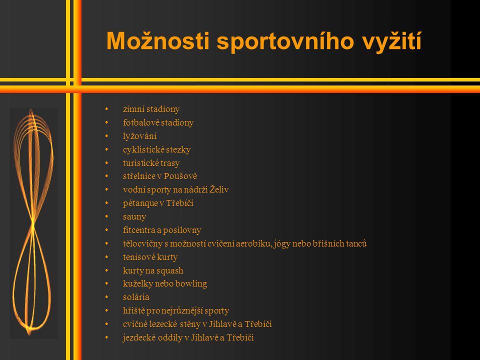 Možnosti sportovního vyžití
