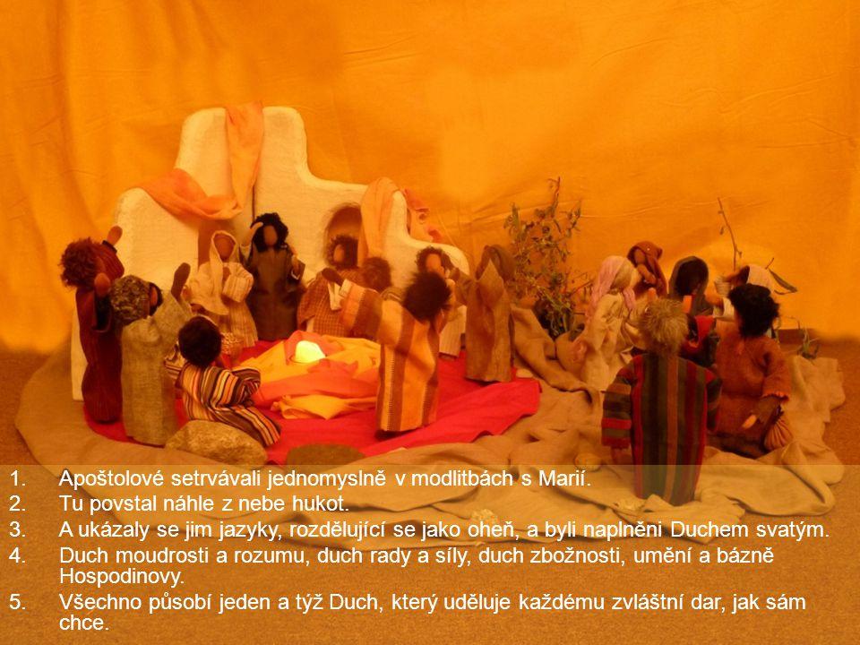 Apoštolové setrvávali jednomyslně v modlitbách s Marií.