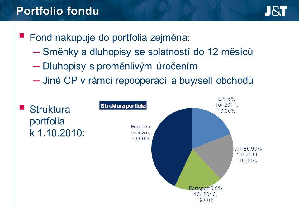 Portfolio fondu Fond nakupuje do portfolia zejména: